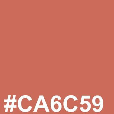 Lighter brown #CA6C59