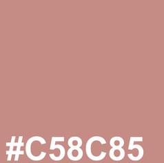 #C58C85