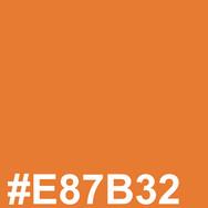 Lighter orange #E87B32