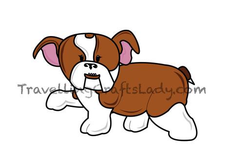 Light brown english bulldog