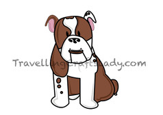 Brown english bulldog