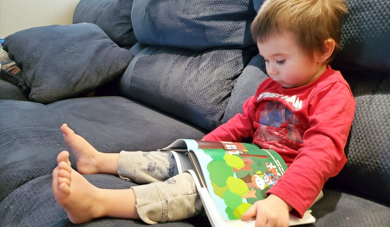 A little boy that has a storybook on his lap reading.