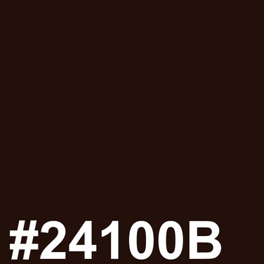 Darkest brown #24100B