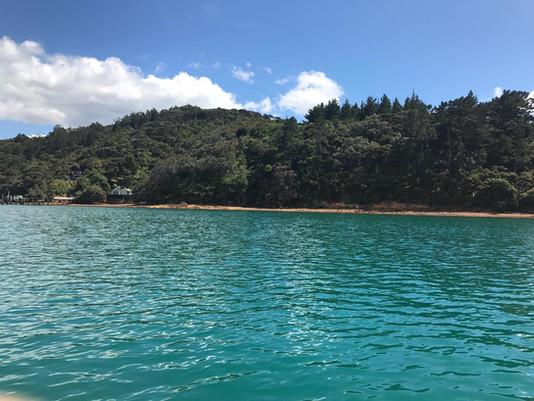 Kawau Bay NZ (2).jpg
