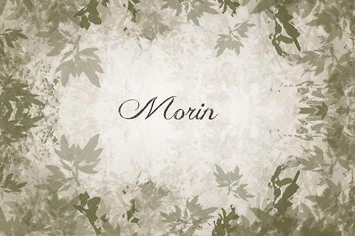 Commande Morin