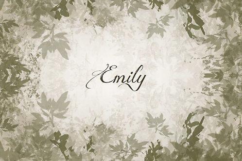 Commande Emily