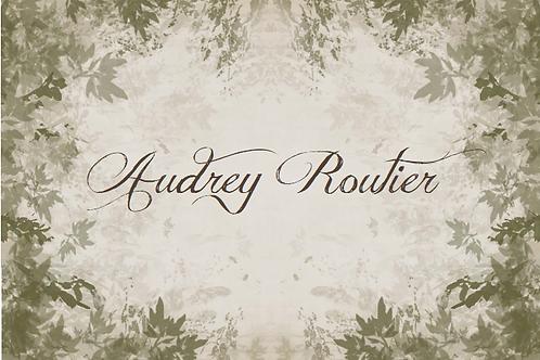 Commande Audrey Routier