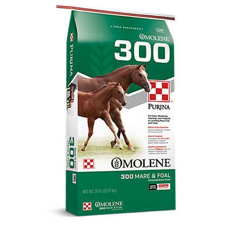 Purina Omolene 300 Growth 50lb Textured