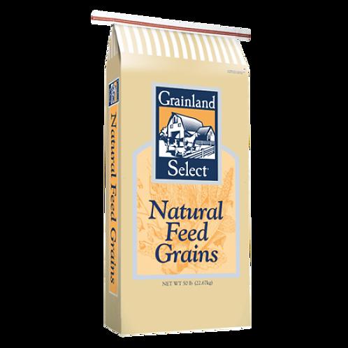 Grainland Select Milo