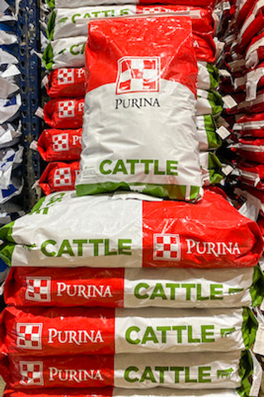 Purina 4-Square Breeder 20 Cattle Feed