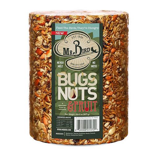 Mr. Bird Bugs and Nut