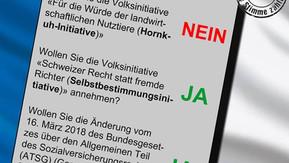Volksabstimmung 25. November 2018