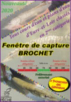 fenetre capture (150dpi).jpg