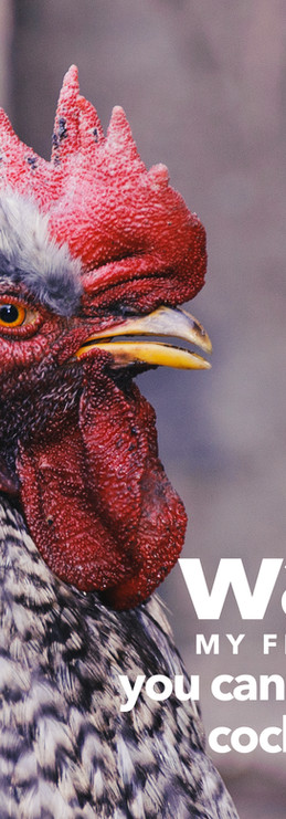 wake up rooster call to action