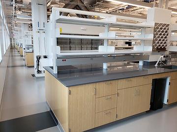 The Waldie Group - Lab