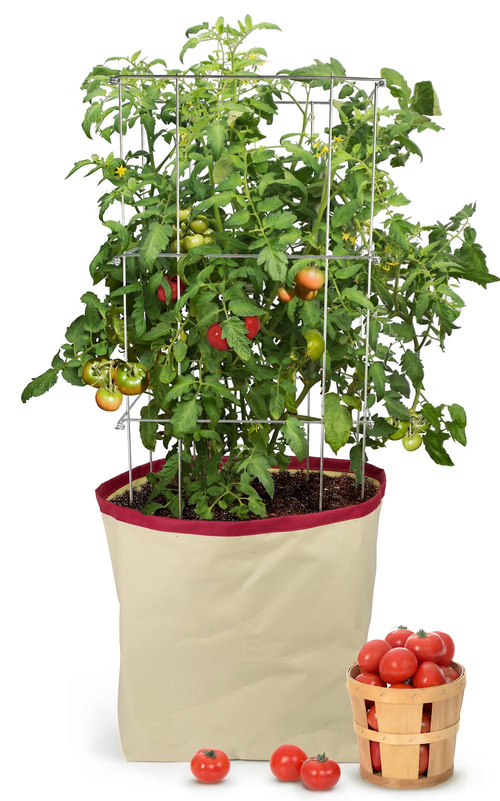 Homegrown harvest Bag