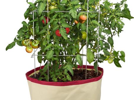 Get Gardening- Let's Grow!