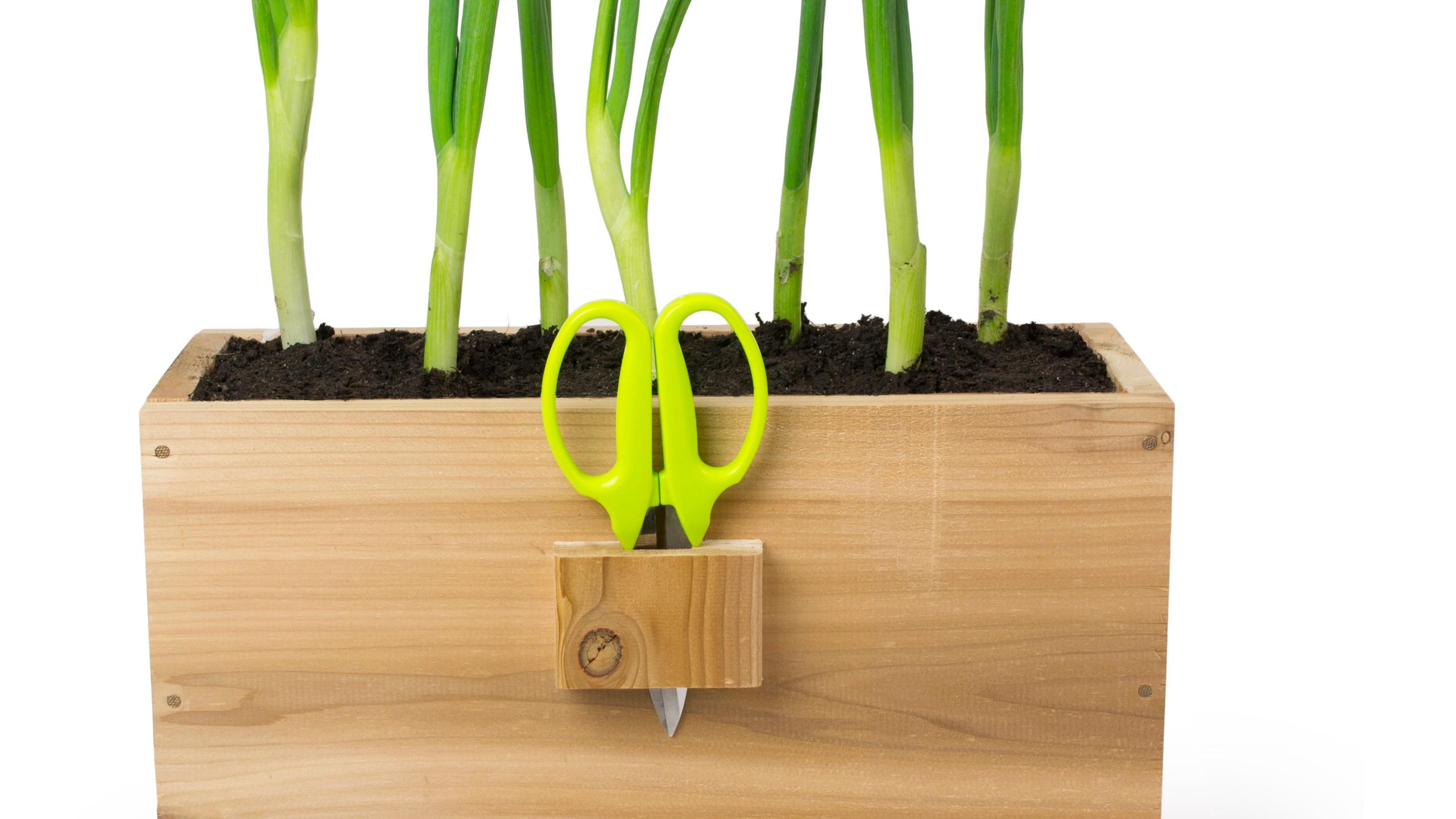 Homegrown Herb Planter