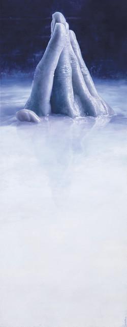 Iceberg 2010