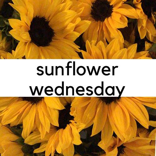 sunflower wednesday