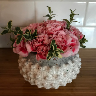 not your mother's carnations $25