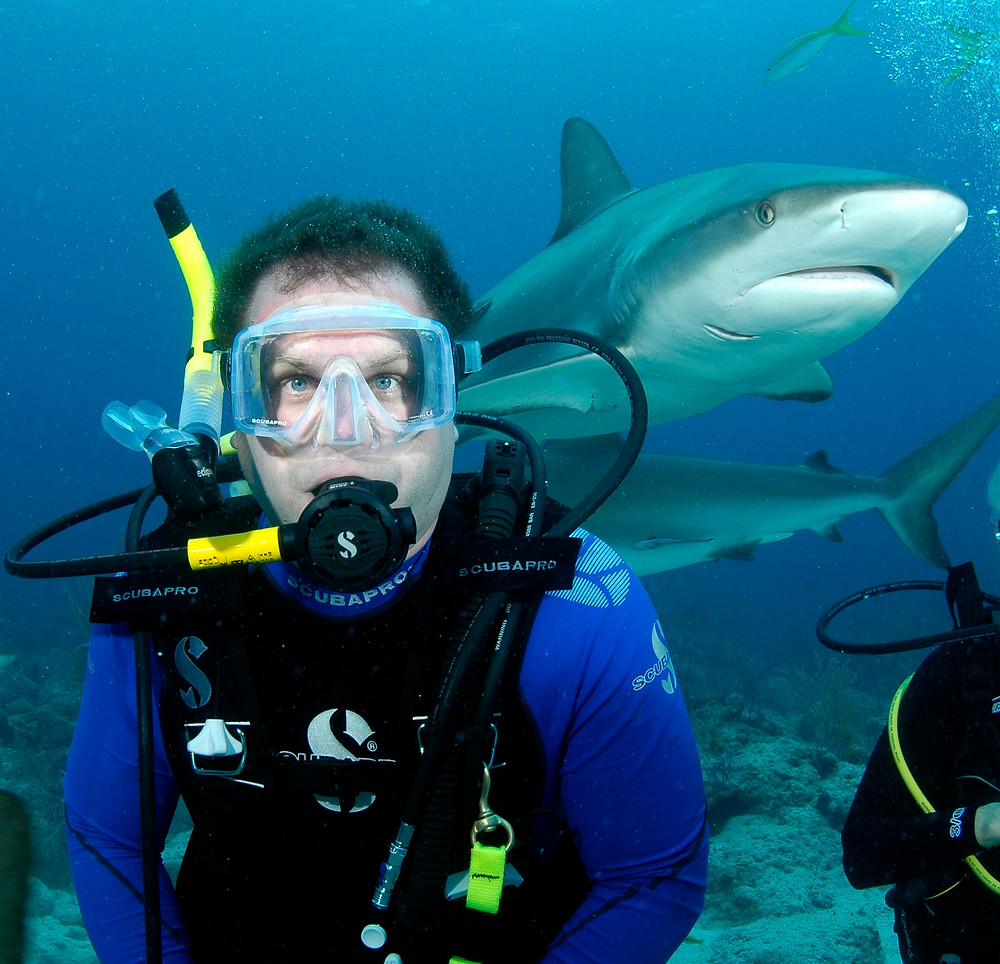 Matt McGee diving with sharks in the Bahamas