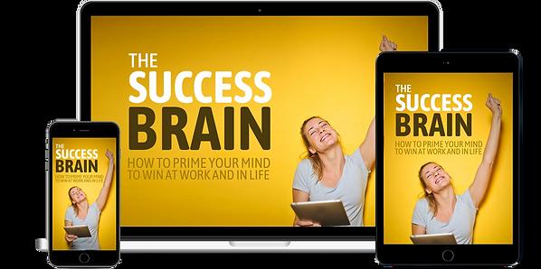 Success-Brain-2.png