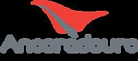 logo_ancd3.png