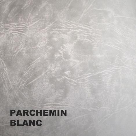 PARCH-B-600PX.jpg