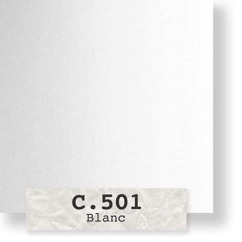1-C501-600.jpg