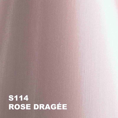 13-rose pale S114.jpg