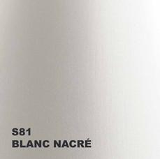 01-Blanc nacre S81.jpg