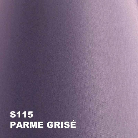 12-parme grise S115.jpg