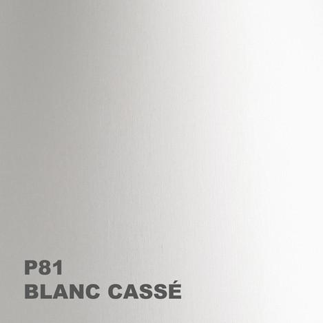 01-P81-600px.jpg