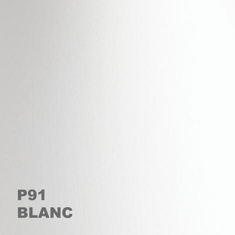 00-P91-600px.jpg
