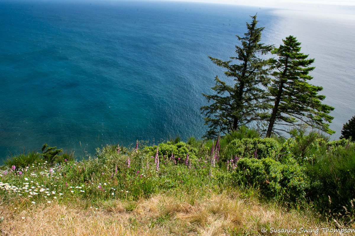 Where land and sea converge