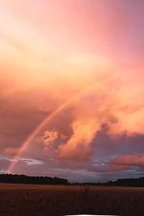 regnbåge golden hour.jpg