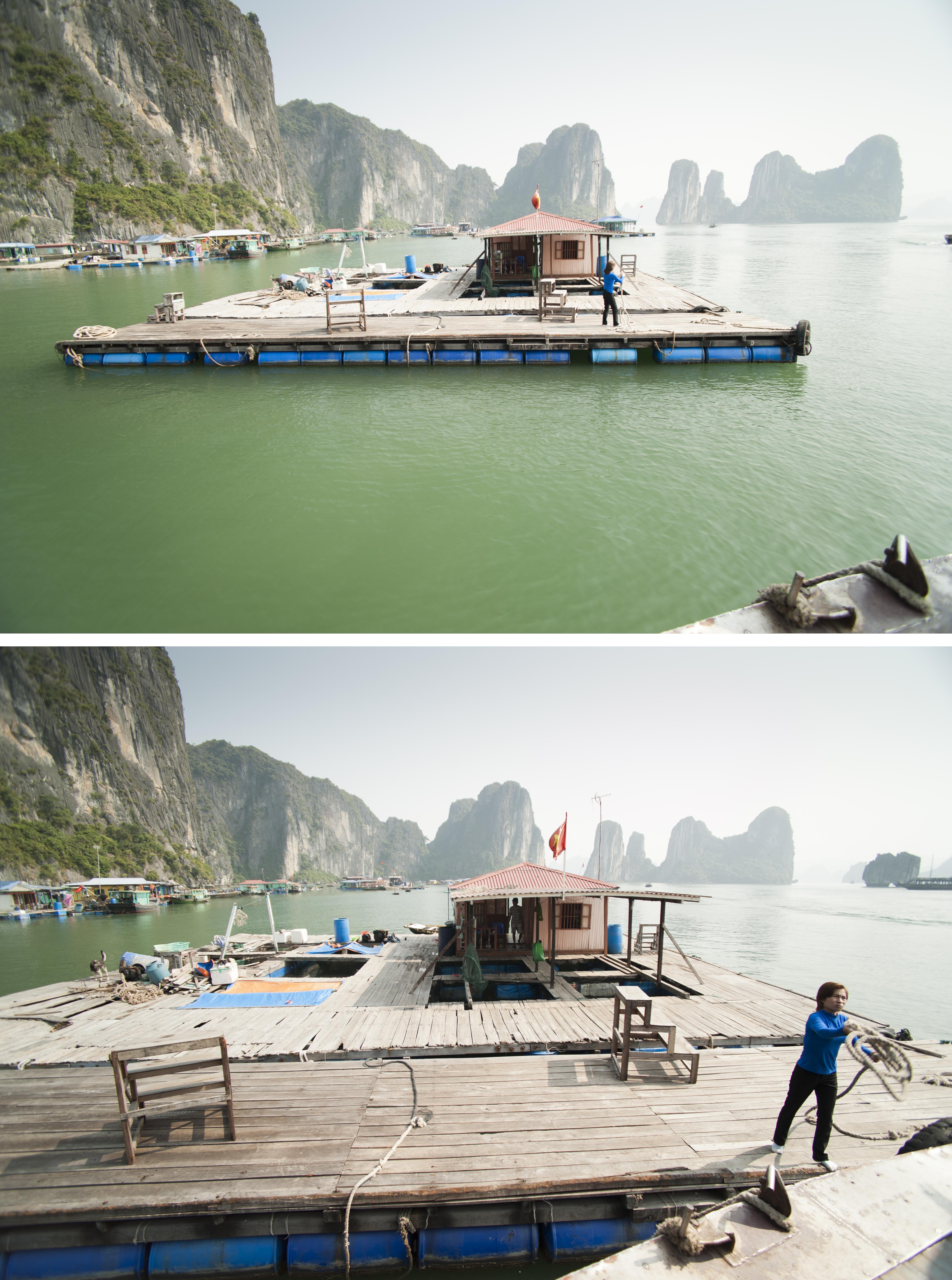 Ha Long Fishery