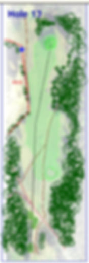 hole 13 layout.jpg