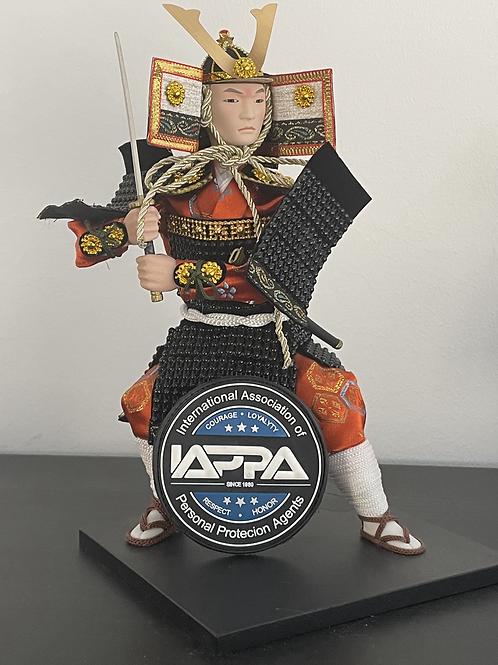 IAPPA 3D Patch (8cm)
