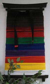 Kenpo belts.jpg