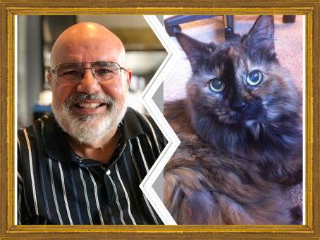 Choose: My Husband or My Cat?