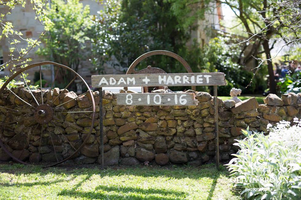 Adam + Harriet - Wedding