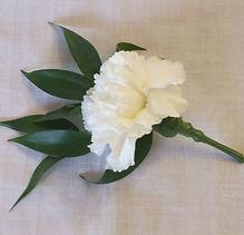 Carnation Buttonhole