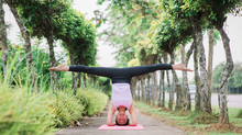 Yoga Epitome of 2014