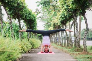 Yoga Epitome of 2014
