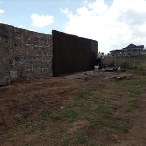 Mauerbau März bis Juni 2021