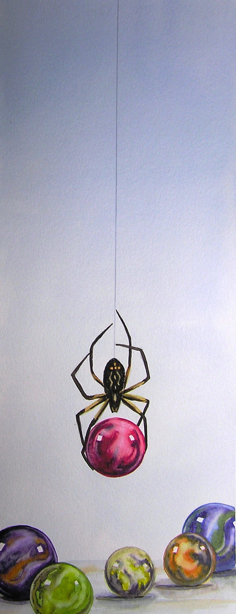 Marble Thief, Spider