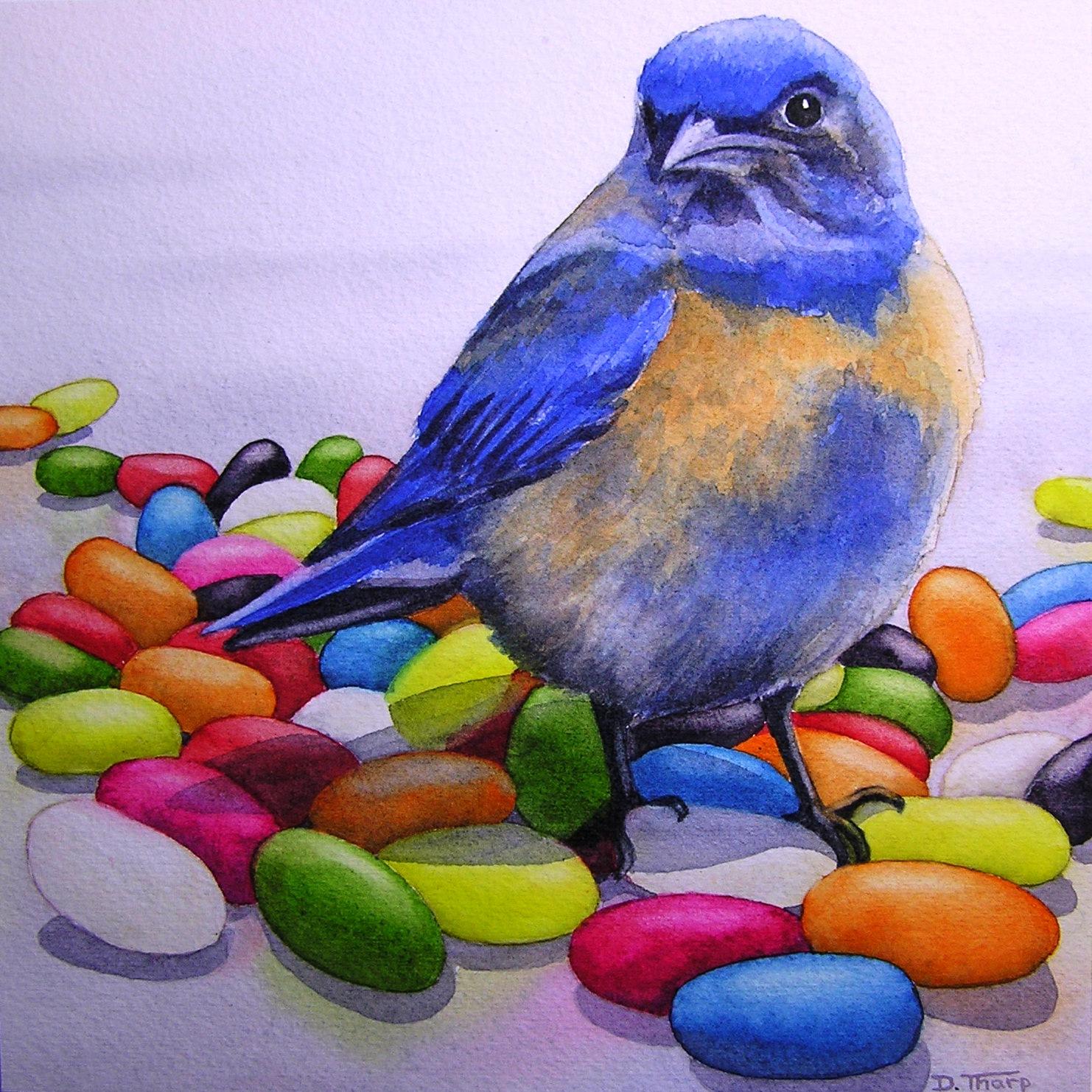 Western Bluebird #1
