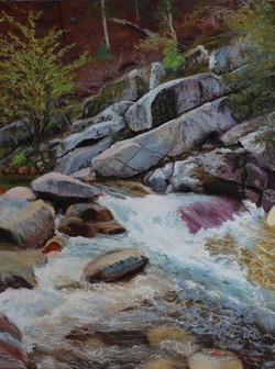 Spring Flow on the Yuba River